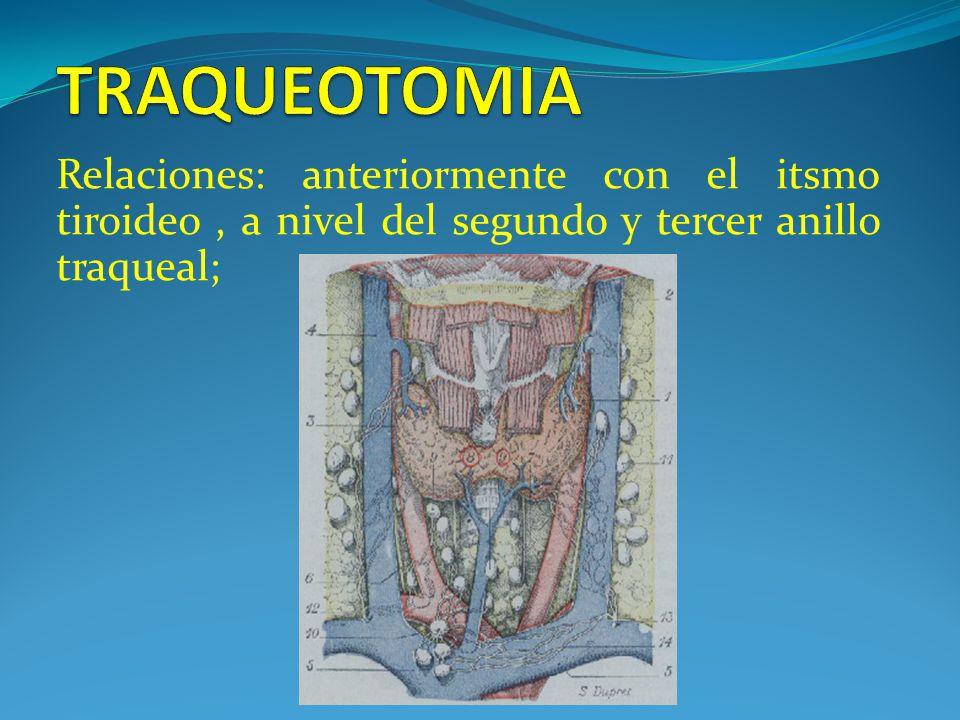 TRAQUEOTOMIA Relaciones: anteriormente con el itsmo tiroideo , a nivel del segundo y tercer anillo traqueal;