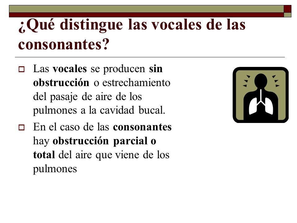 ¿Qué distingue las vocales de las consonantes