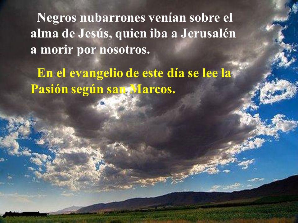Negros nubarrones venían sobre el alma de Jesús, quien iba a Jerusalén a morir por nosotros.