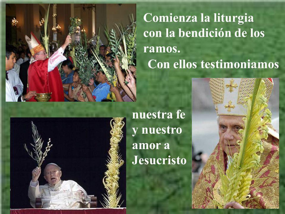 Comienza la liturgia con la bendición de los ramos.