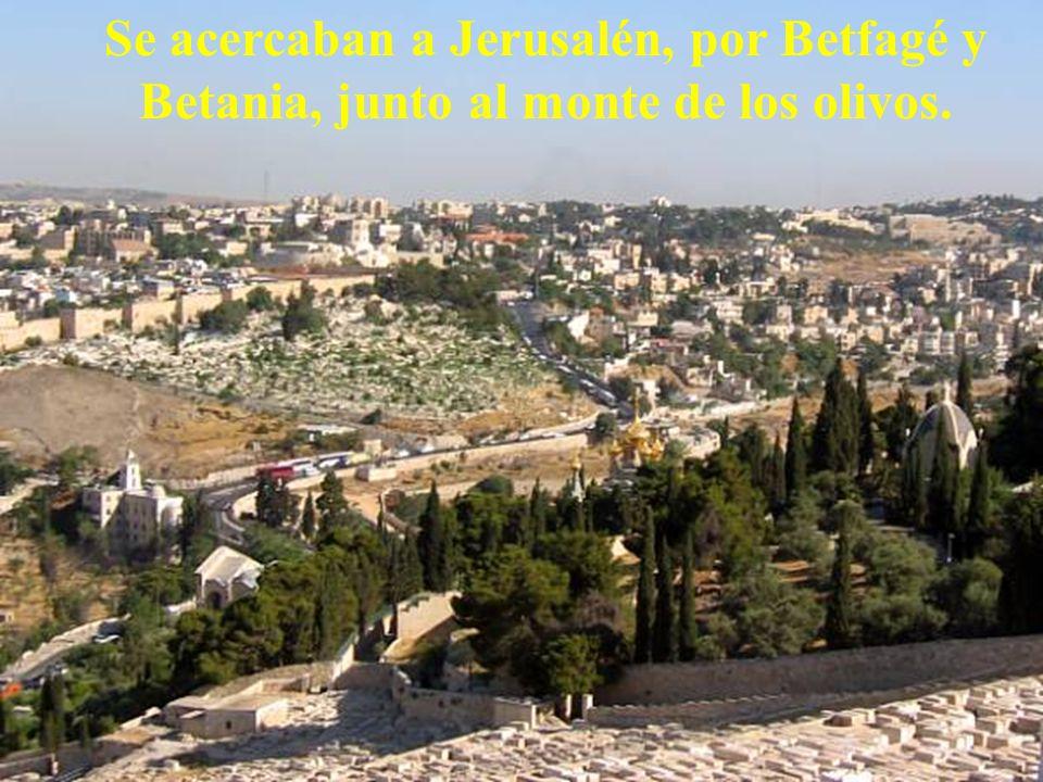 Se acercaban a Jerusalén, por Betfagé y Betania, junto al monte de los olivos.