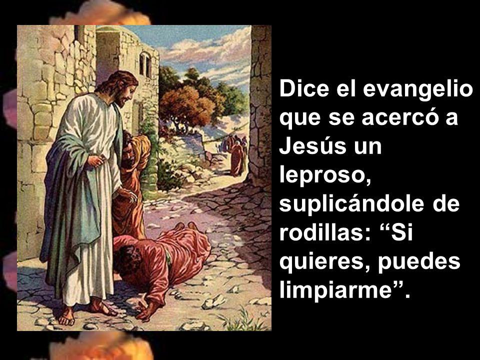 Dice el evangelio que se acercó a Jesús un leproso, suplicándole de rodillas: Si quieres, puedes limpiarme .