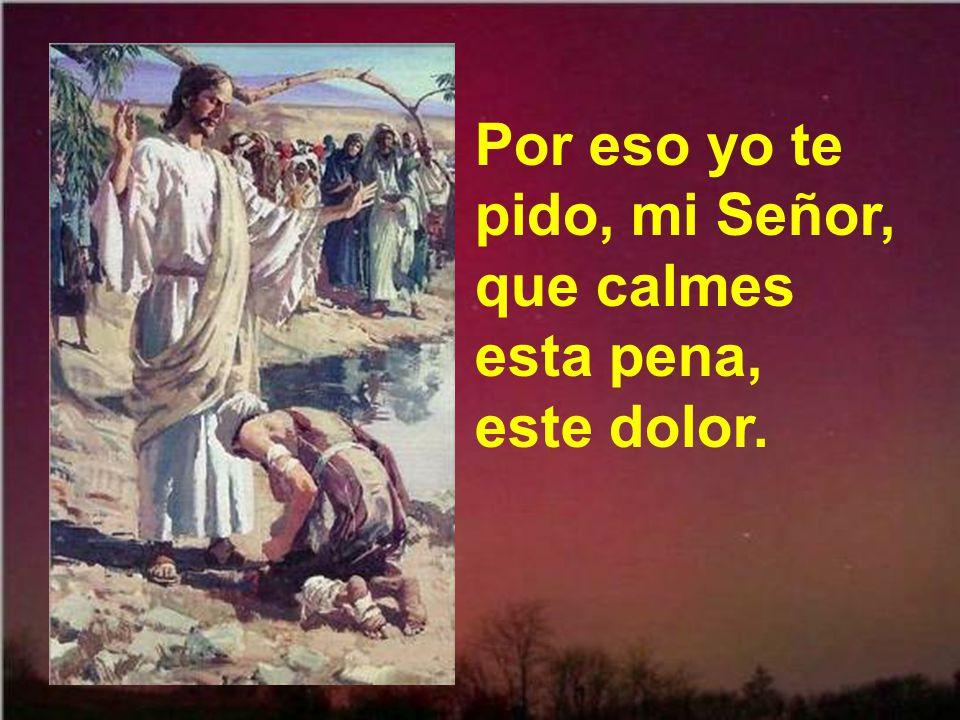 Por eso yo te pido, mi Señor, que calmes esta pena, este dolor.