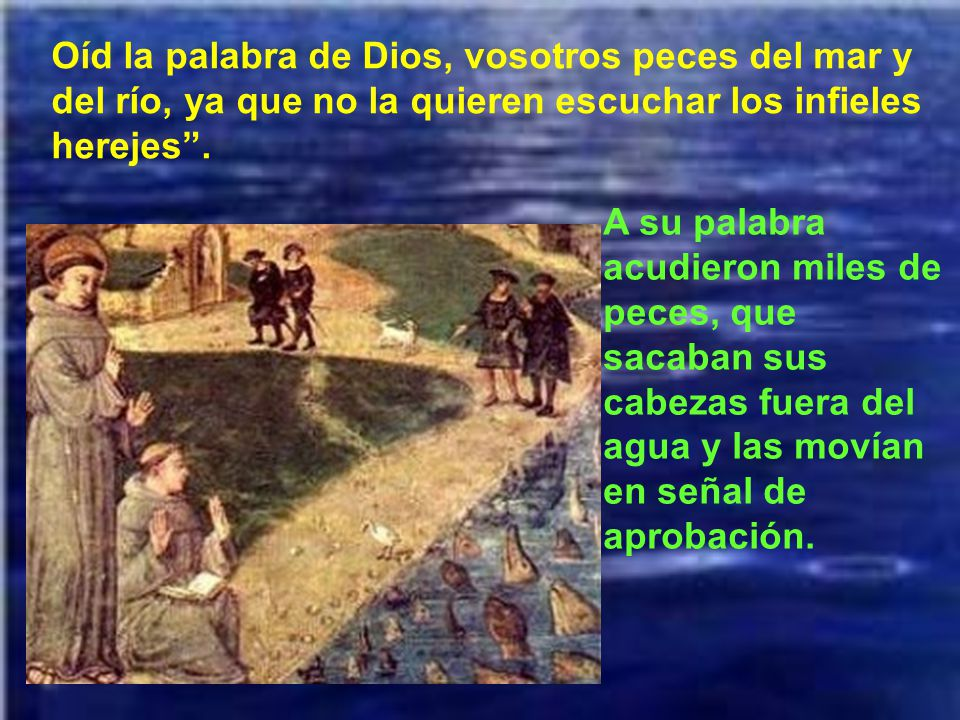 Oíd la palabra de Dios, vosotros peces del mar y del río, ya que no la quieren escuchar los infieles herejes .