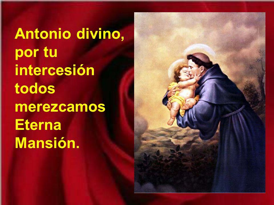 Antonio divino, por tu intercesión todos merezcamos Eterna Mansión.