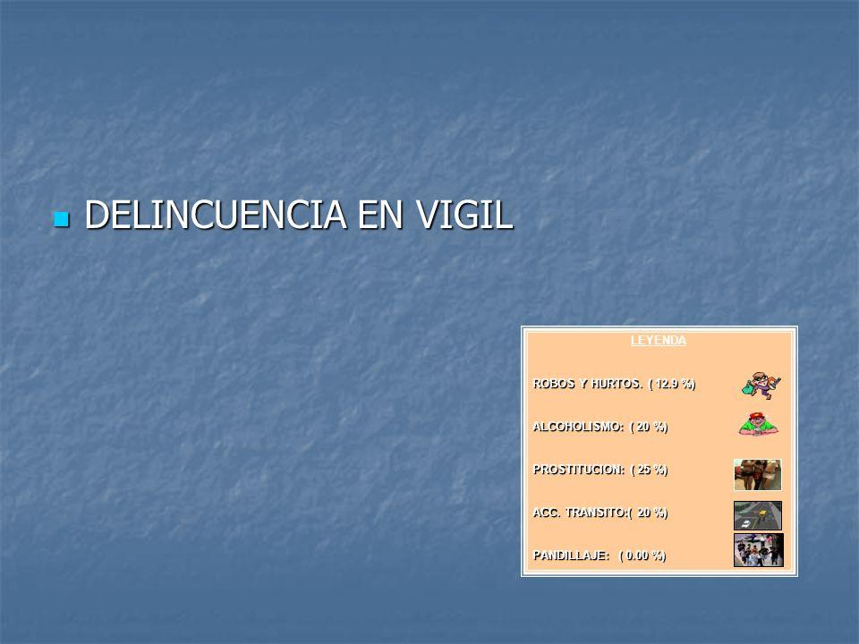 DELINCUENCIA EN VIGIL LEYENDA ROBOS Y HURTOS. ( 12.9 %)