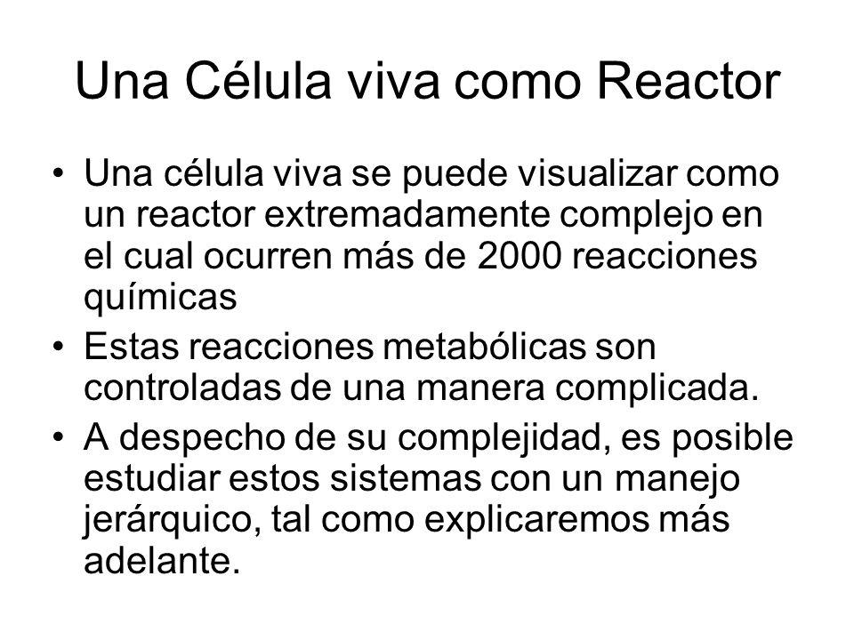 Una Célula viva como Reactor