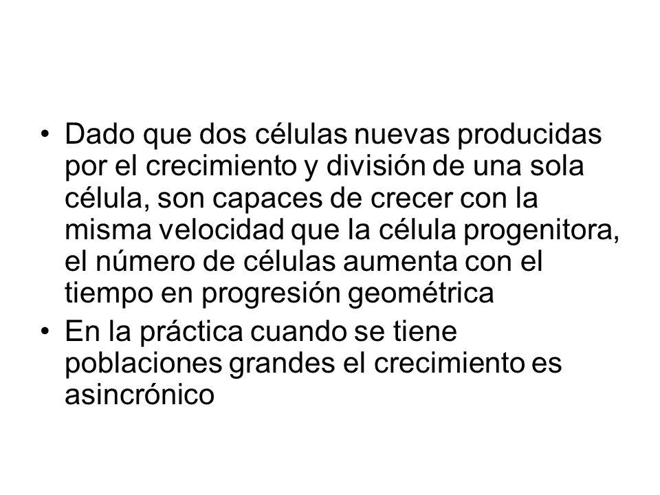Dado que dos células nuevas producidas por el crecimiento y división de una sola célula, son capaces de crecer con la misma velocidad que la célula progenitora, el número de células aumenta con el tiempo en progresión geométrica
