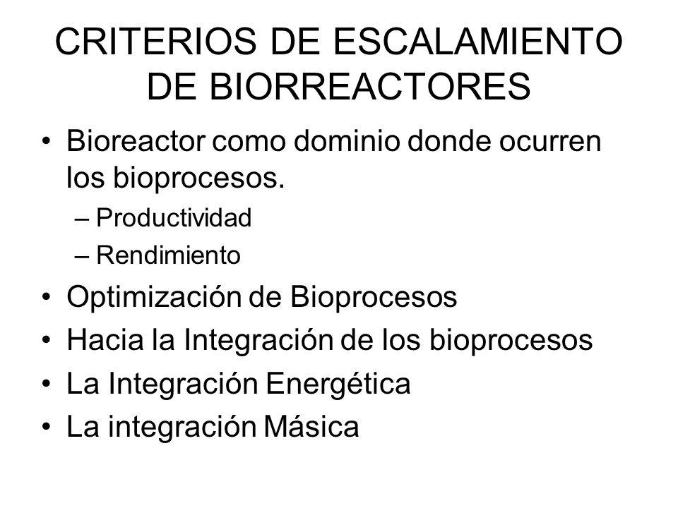 CRITERIOS DE ESCALAMIENTO DE BIORREACTORES