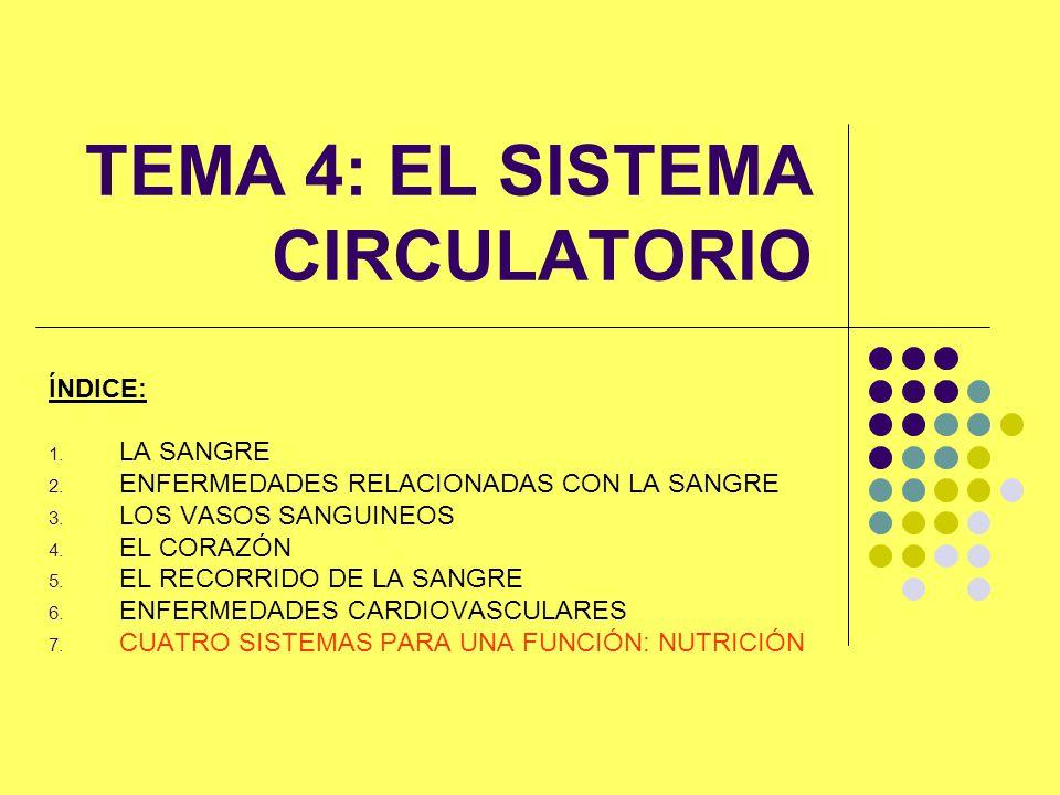 TEMA 4: EL SISTEMA CIRCULATORIO