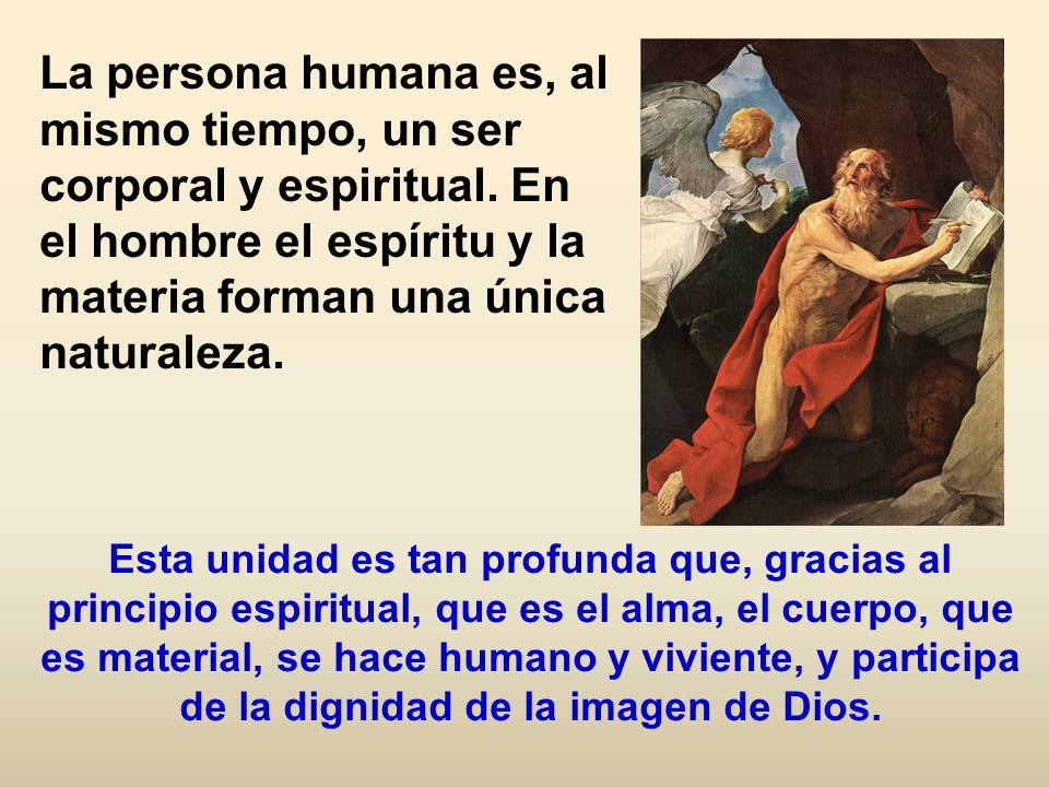 La persona humana es, al mismo tiempo, un ser corporal y espiritual