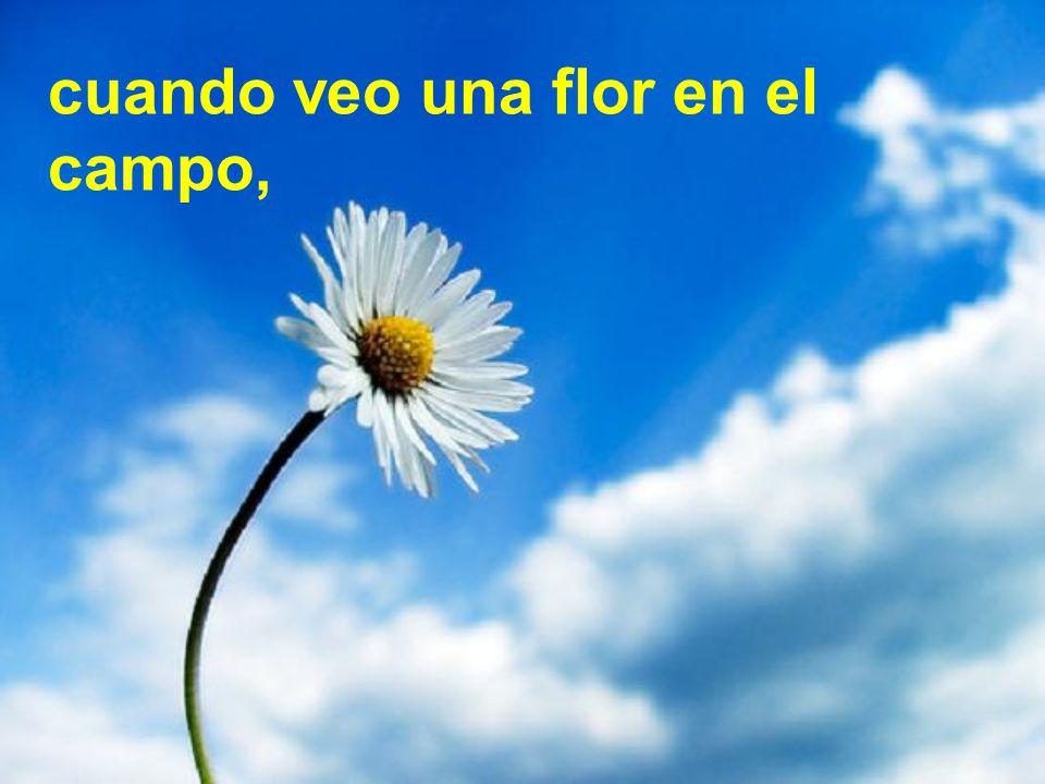 cuando veo una flor en el campo,