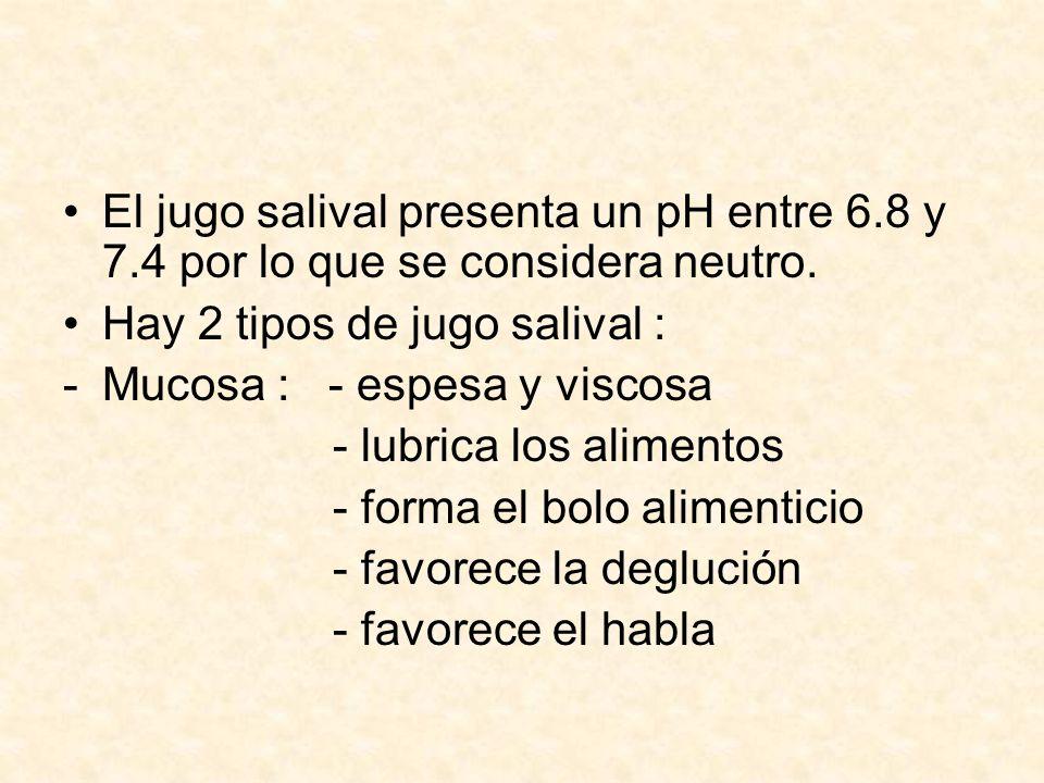 El jugo salival presenta un pH entre 6. 8 y 7