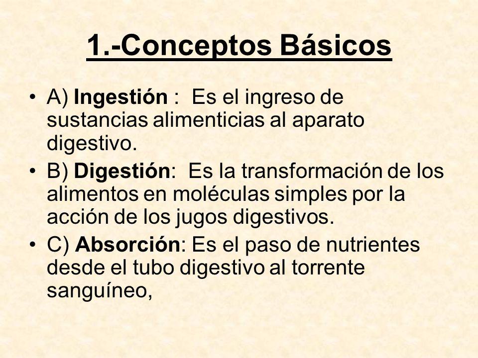 1.-Conceptos Básicos A) Ingestión : Es el ingreso de sustancias alimenticias al aparato digestivo.