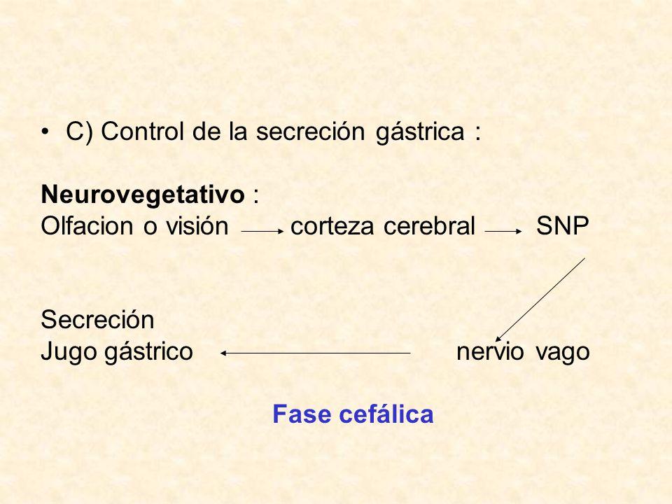 C) Control de la secreción gástrica :