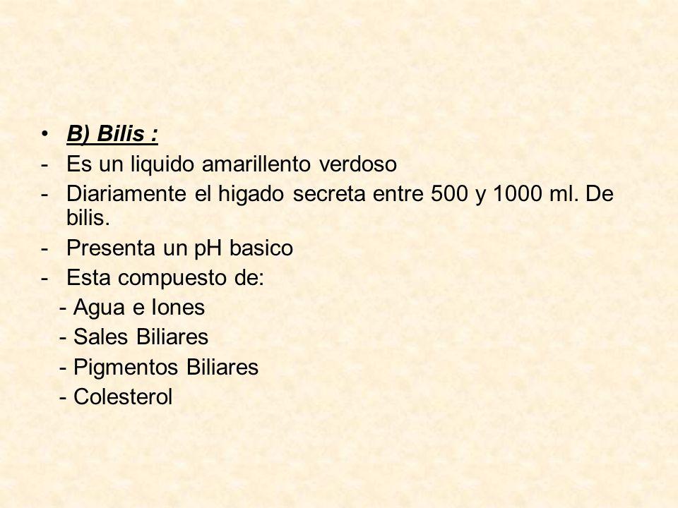 B) Bilis : Es un liquido amarillento verdoso. Diariamente el higado secreta entre 500 y 1000 ml. De bilis.