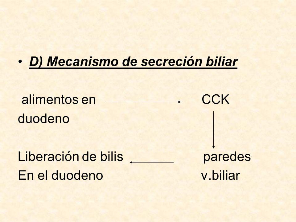 D) Mecanismo de secreción biliar
