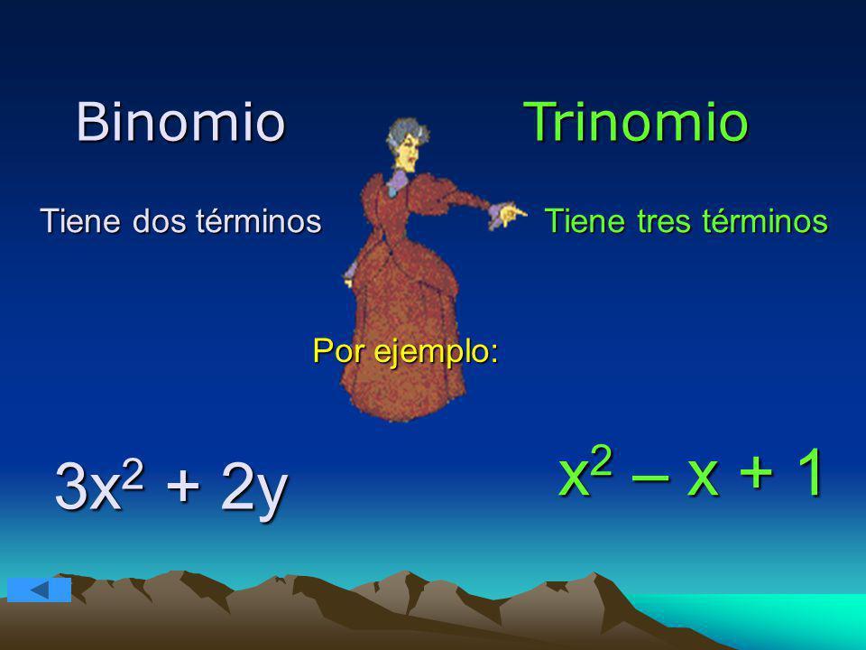 x2 – x + 1 3x2 + 2y Binomio Trinomio Tiene dos términos