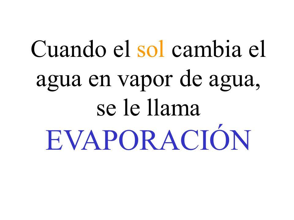 Cuando el sol cambia el agua en vapor de agua, se le llama EVAPORACIÓN