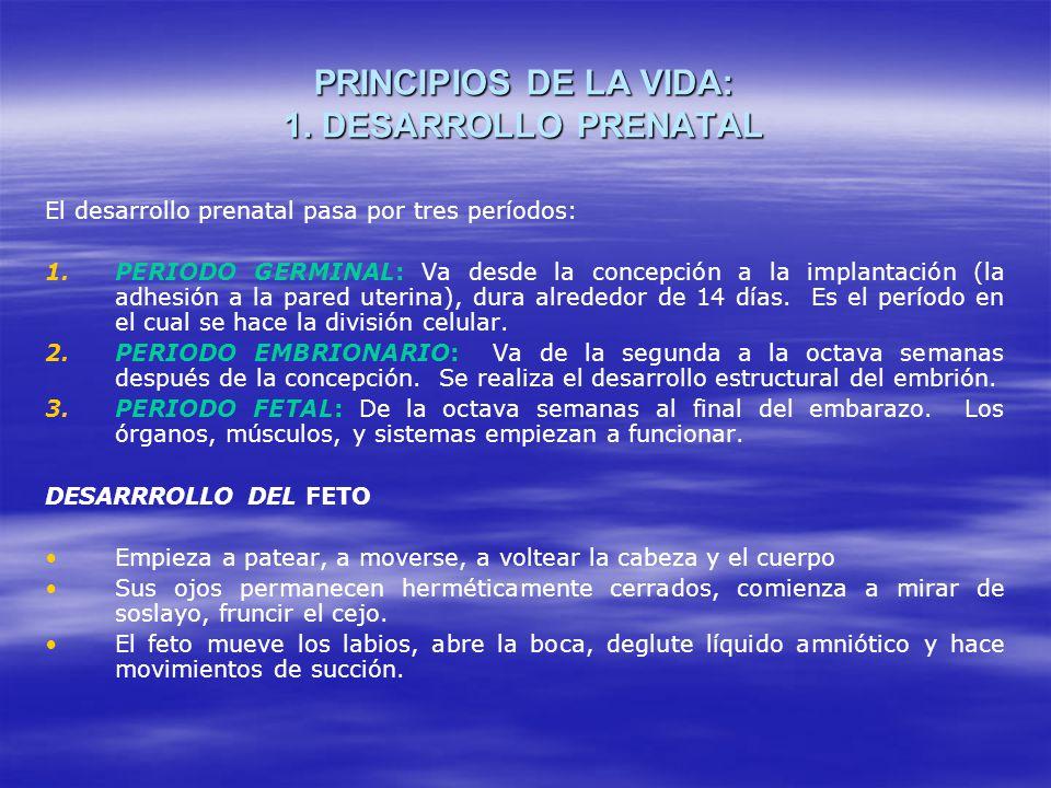 PRINCIPIOS DE LA VIDA: 1. DESARROLLO PRENATAL