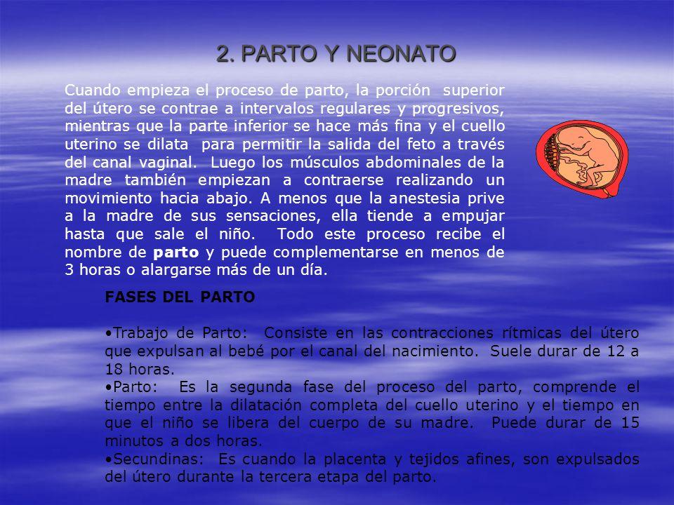 2. PARTO Y NEONATO