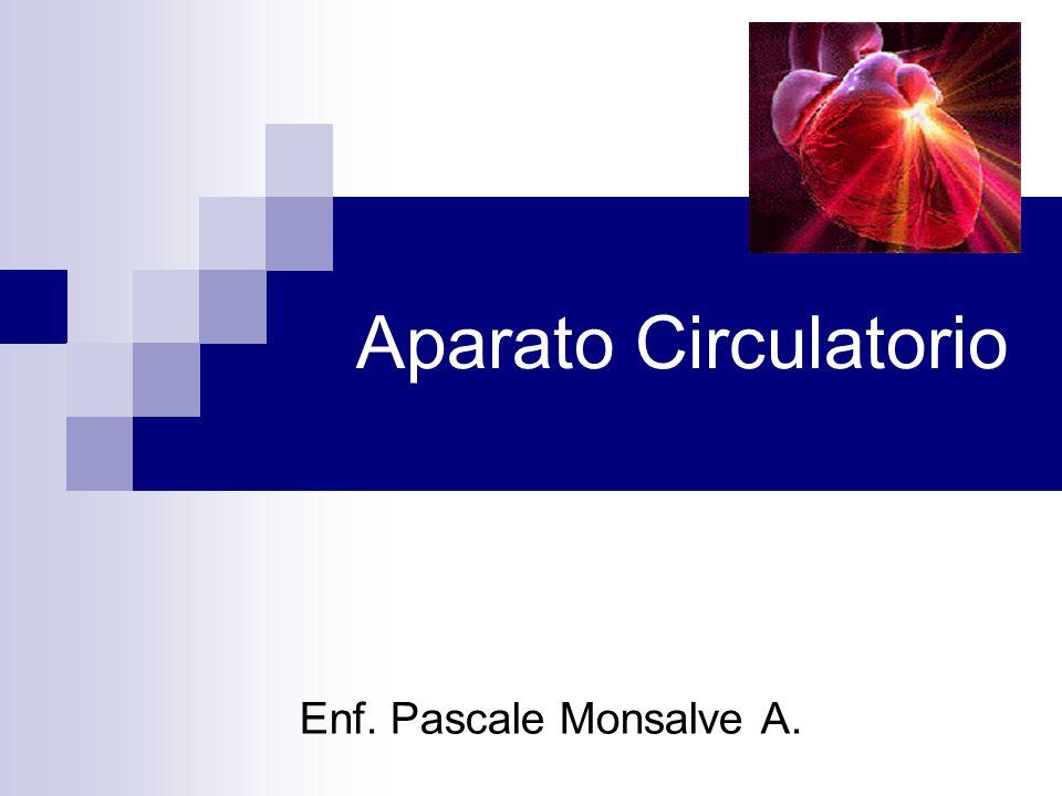 Aparato Circulatorio Enf. Pascale Monsalve A.