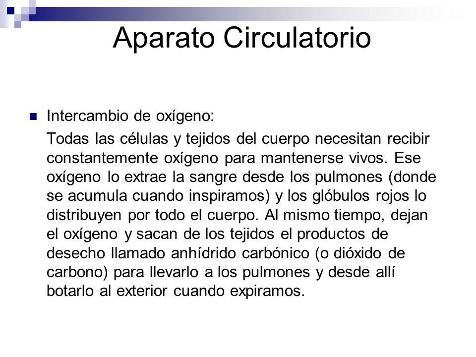 Aparato Circulatorio Intercambio de oxígeno: