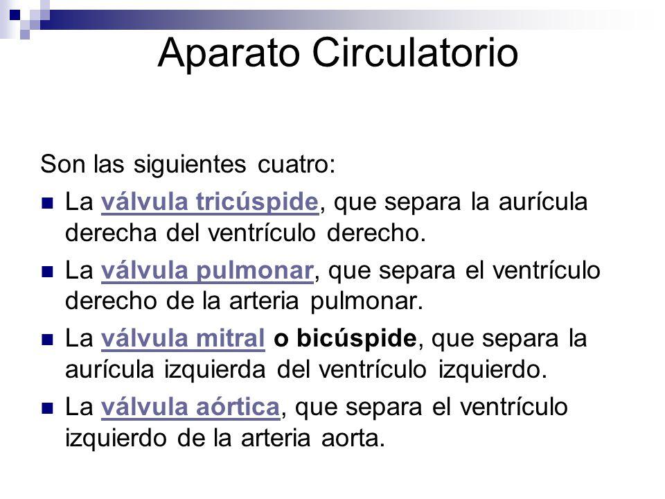 Aparato Circulatorio Son las siguientes cuatro: