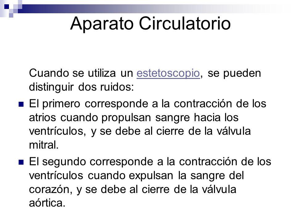 Aparato Circulatorio Cuando se utiliza un estetoscopio, se pueden distinguir dos ruidos: