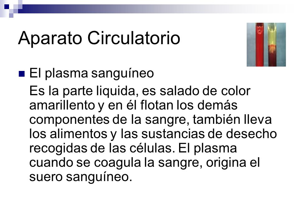 Aparato Circulatorio El plasma sanguíneo