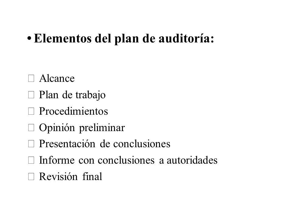 Elementos del plan de auditoría:
