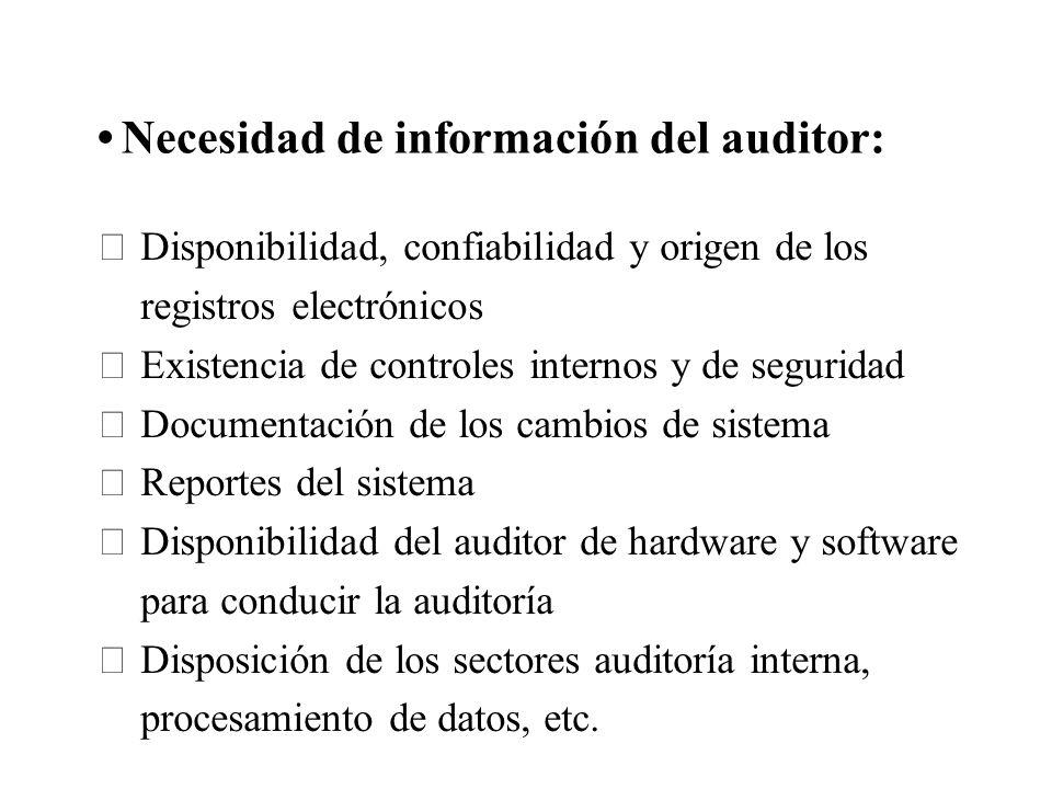 Necesidad de información del auditor: