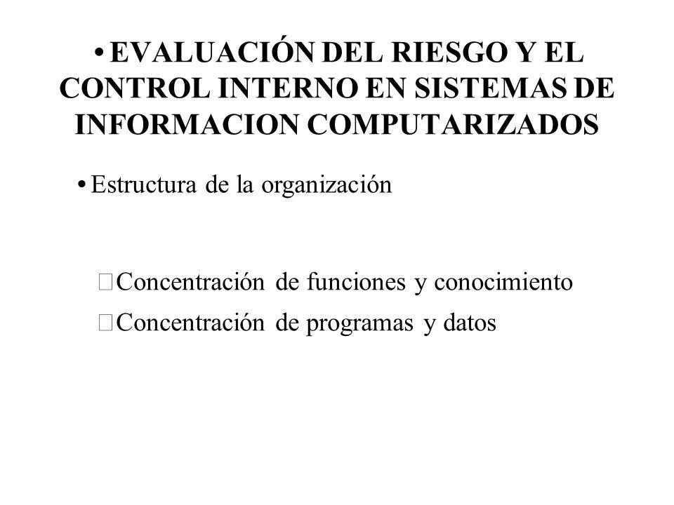 EVALUACIÓN DEL RIESGO Y EL CONTROL INTERNO EN SISTEMAS DE INFORMACION COMPUTARIZADOS