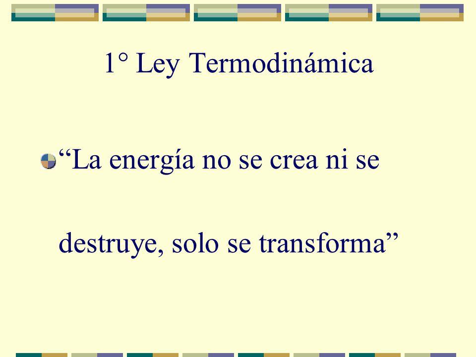 1° Ley Termodinámica La energía no se crea ni se destruye, solo se transforma
