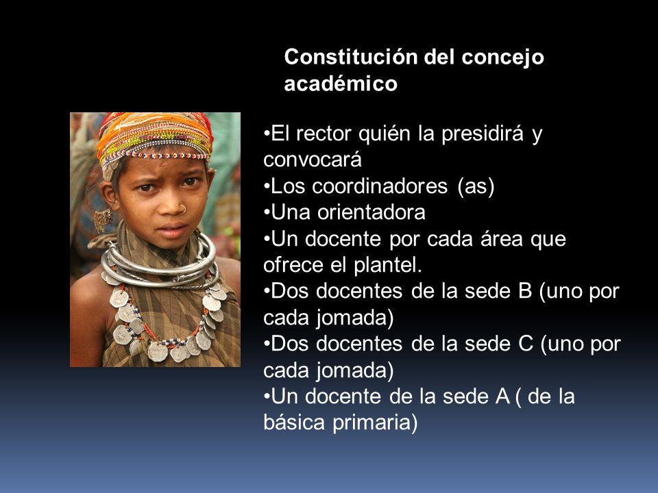 Constitución del concejo académico