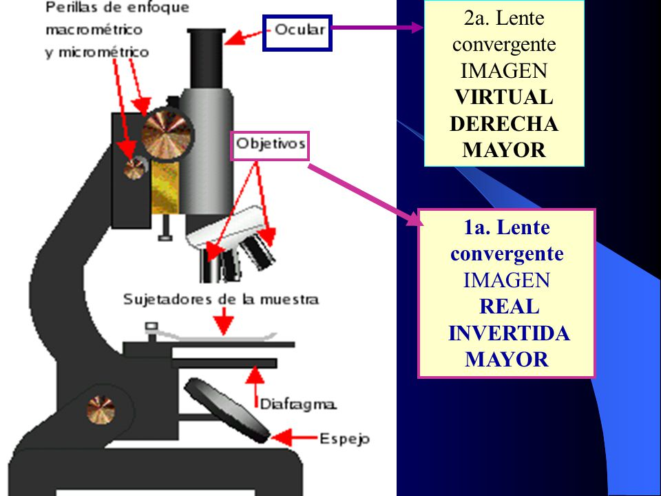 2a. Lente convergente IMAGEN. VIRTUAL. DERECHA. MAYOR. 1a. Lente convergente. IMAGEN. REAL. INVERTIDA.