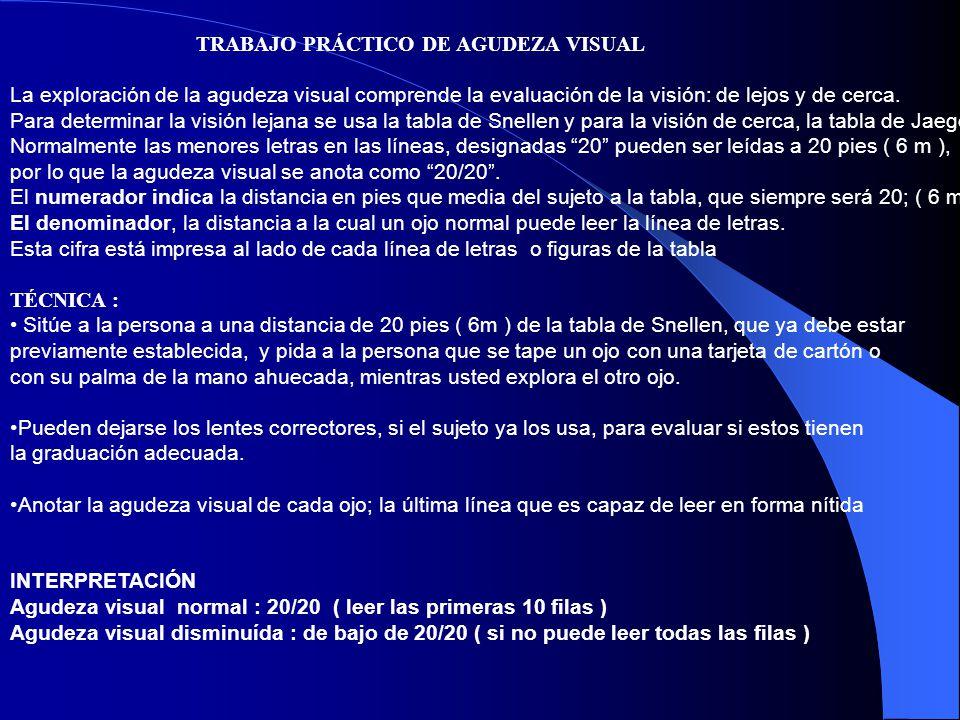TRABAJO PRÁCTICO DE AGUDEZA VISUAL