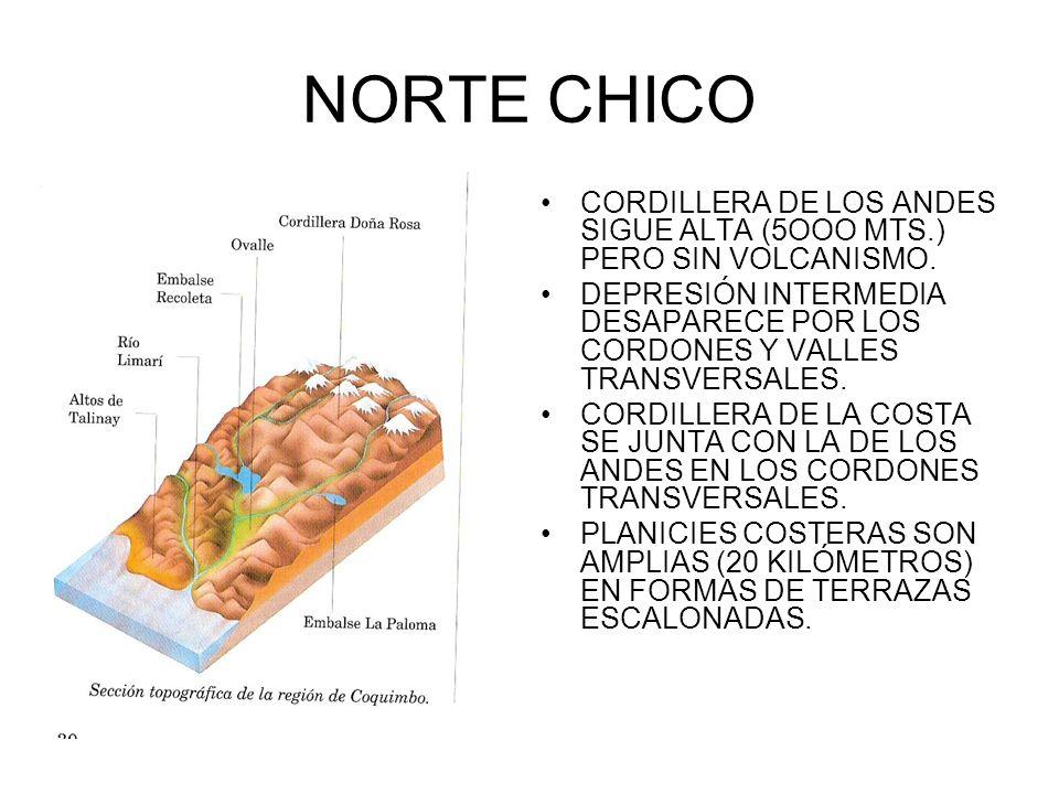 NORTE CHICO CORDILLERA DE LOS ANDES SIGUE ALTA (5OOO MTS.) PERO SIN VOLCANISMO.