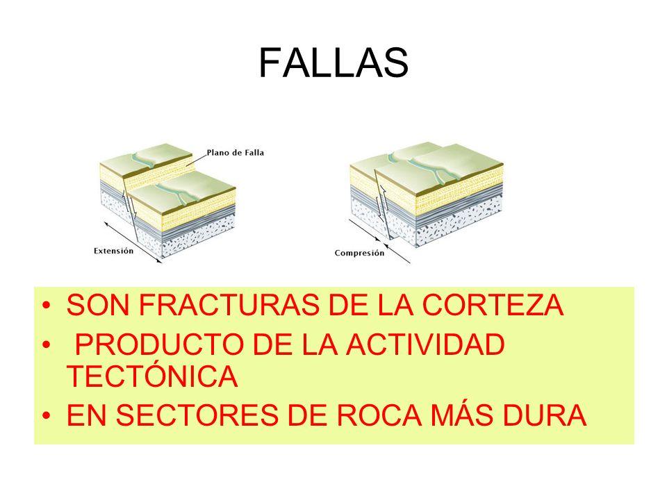 FALLAS SON FRACTURAS DE LA CORTEZA PRODUCTO DE LA ACTIVIDAD TECTÓNICA