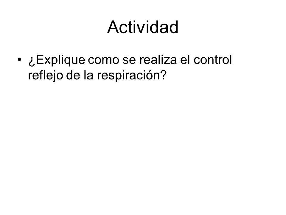 Actividad ¿Explique como se realiza el control reflejo de la respiración