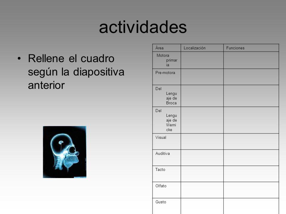 actividades Rellene el cuadro según la diapositiva anterior Área