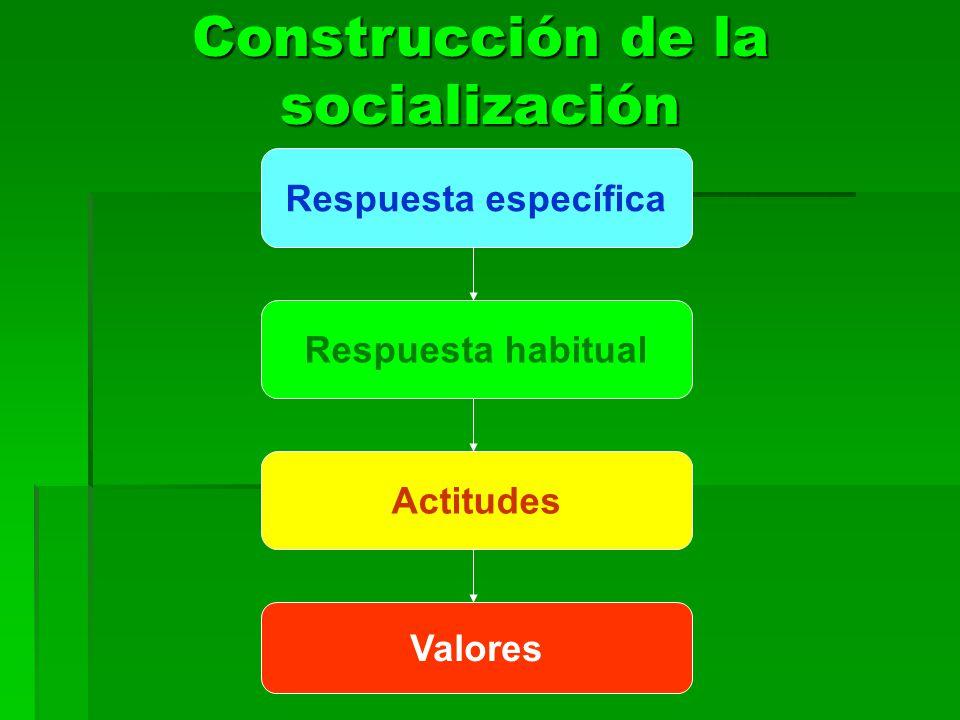 Construcción de la socialización