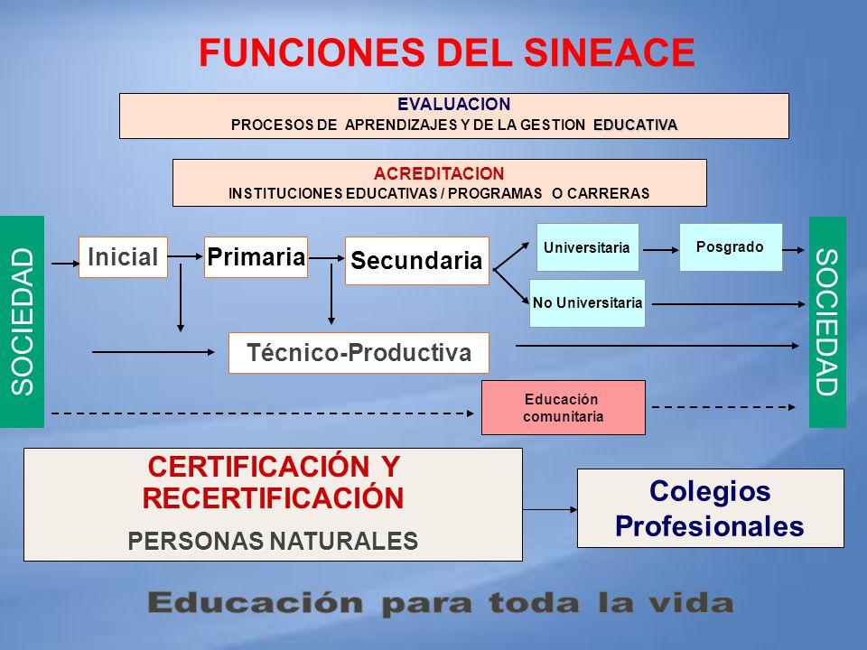 FUNCIONES DEL SINEACE SOCIEDAD SOCIEDAD