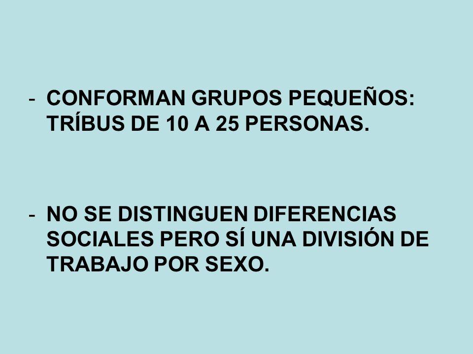 CONFORMAN GRUPOS PEQUEÑOS: TRÍBUS DE 10 A 25 PERSONAS.