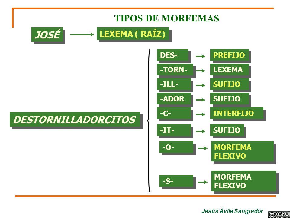 TIPOS DE MORFEMAS JOSÉ DESTORNILLADORCITOS LEXEMA ( RAÍZ) DES- PREFIJO