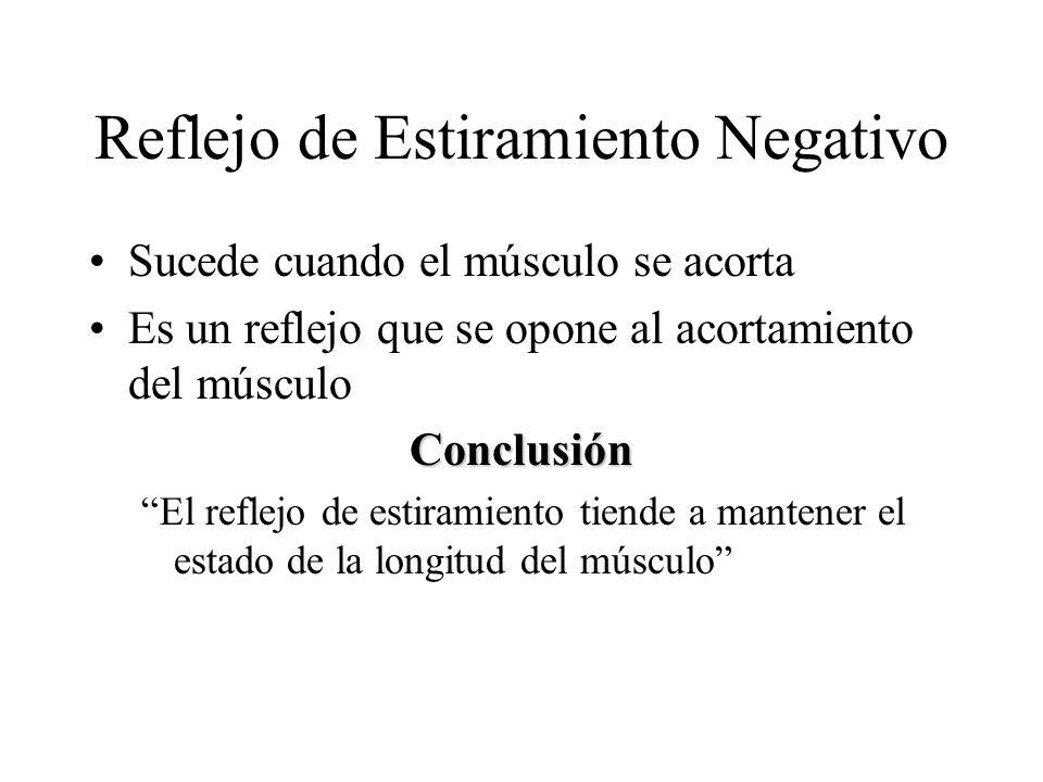 Reflejo de Estiramiento Negativo