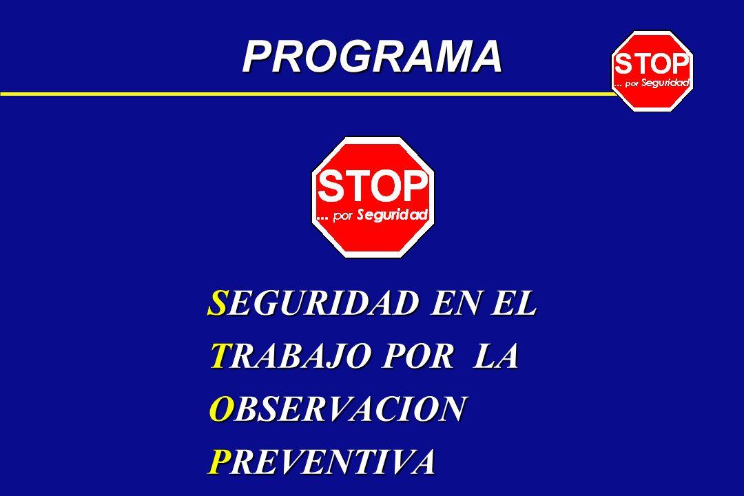 SEGURIDAD EN EL TRABAJO POR LA OBSERVACION PREVENTIVA