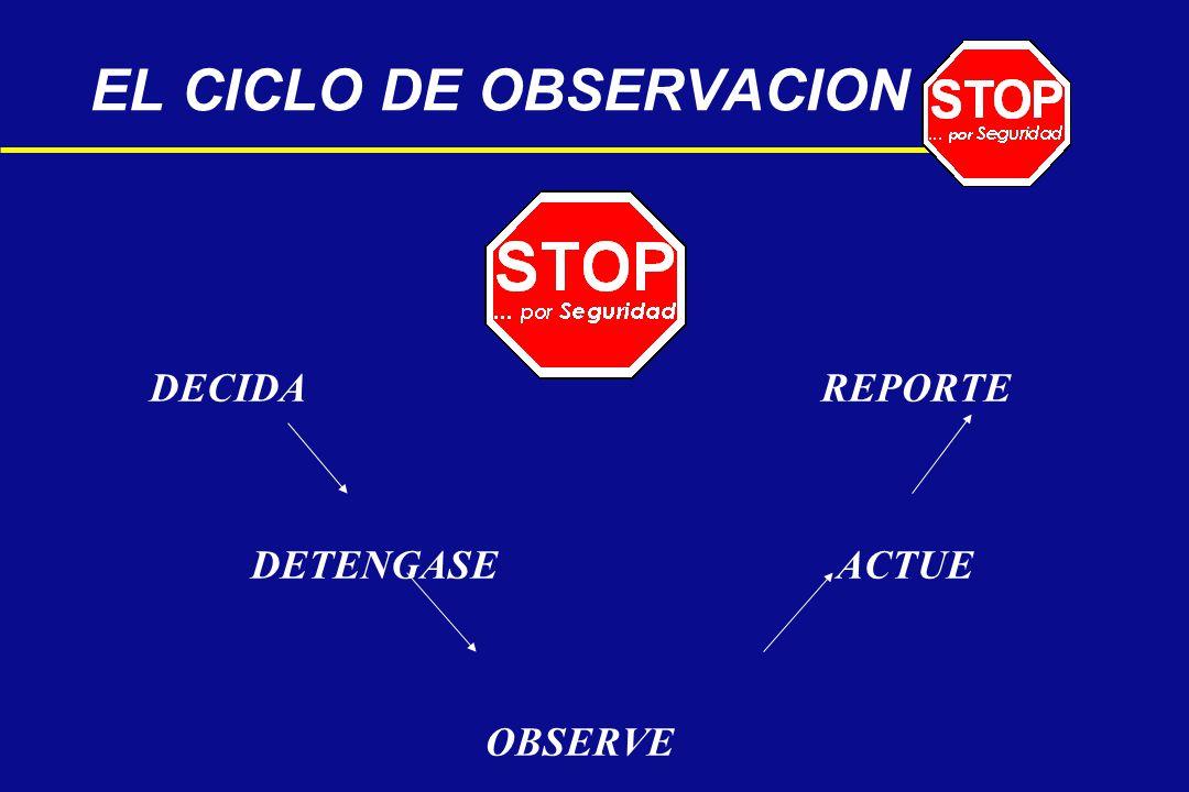 EL CICLO DE OBSERVACION