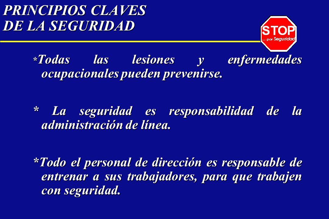 PRINCIPIOS CLAVES DE LA SEGURIDAD