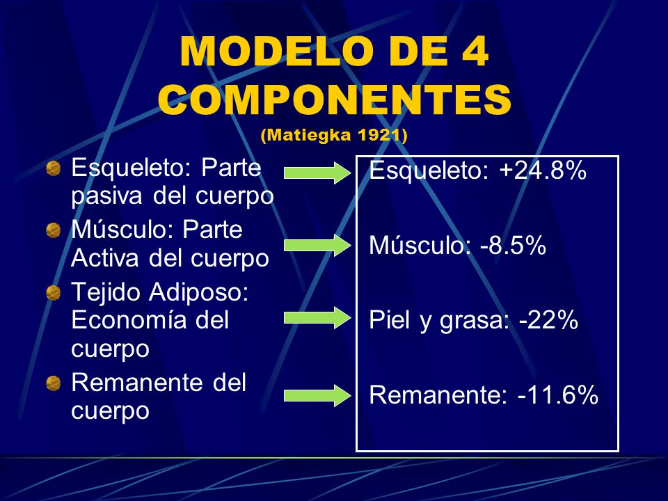 MODELO DE 4 COMPONENTES (Matiegka 1921)